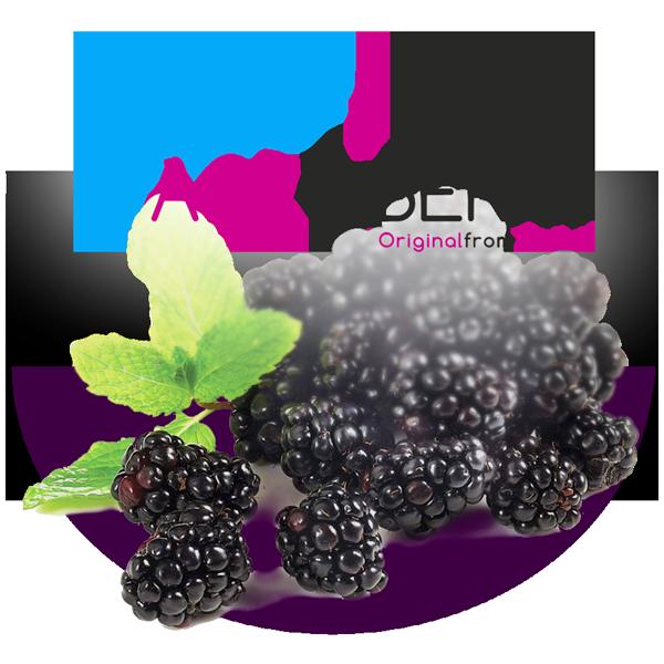 ZarZamora congelada agroberry